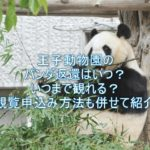 王子動物園のパンダ返還いつでいつまで観れる?観覧申込み方法も併せて紹介